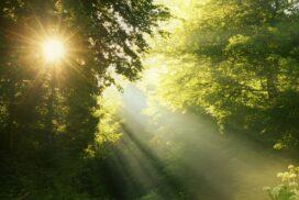 Солнечный свет меняет свой цвет?