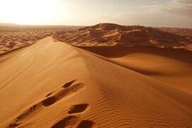 В пустыне Сахара множество загадок.